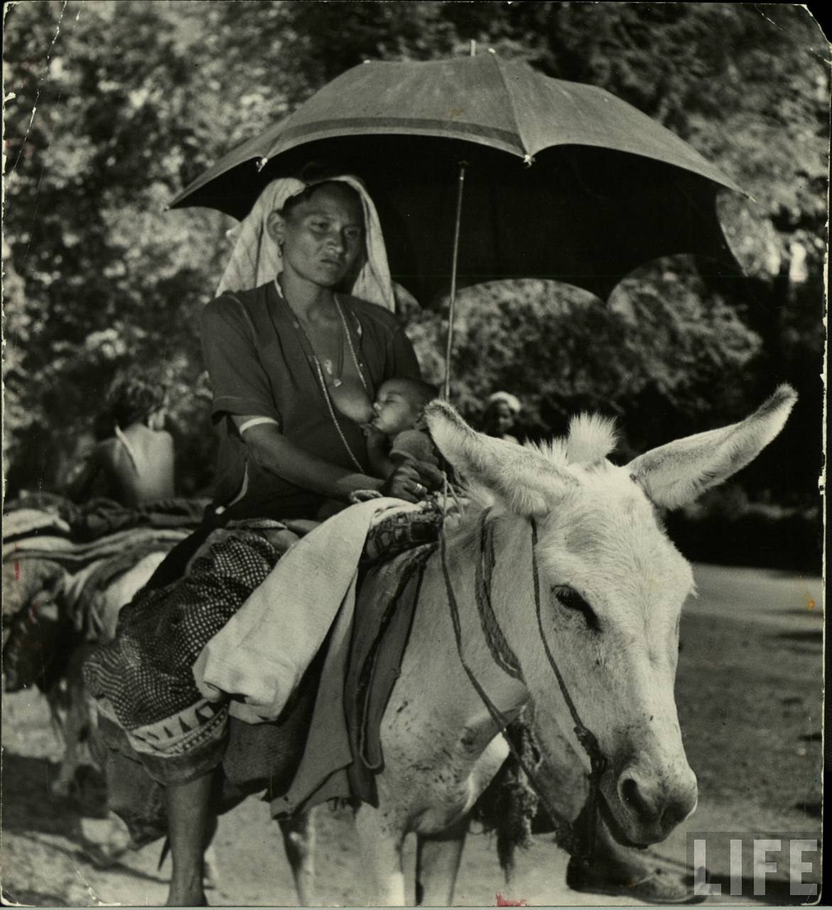 Mother and child are part of caravan 25 days on road. More fortunate than most, woman can ride and has an umbrella for shade as she feeds her baby
