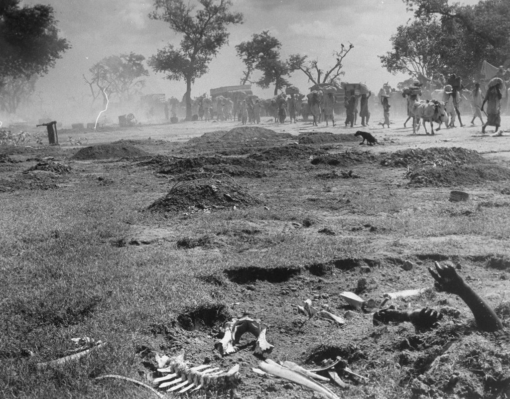 The dead from a previous Moslem convoy lie rotting at the roadside next to the whitened bones of their buffaloes and bullocks