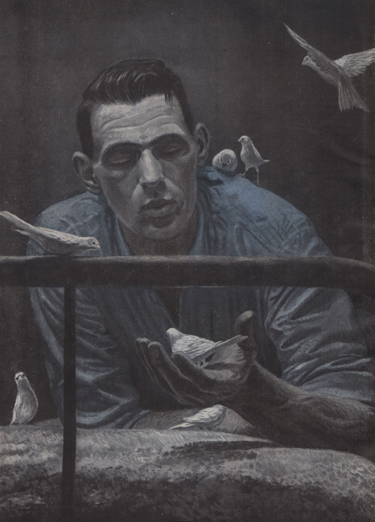 Birdman of Alcatraz Illustration
